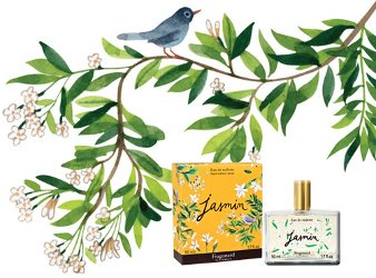 JASMIN BY FRAGONARD PERFUME REVIEW